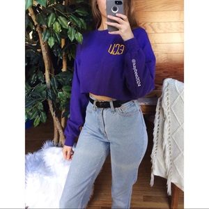 🌿 Vintage ECU Cozy Cropped Embroidered Pullover